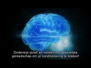 Media en onze hersenen