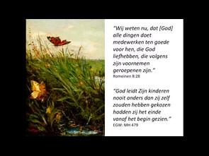 Van De Vlinder, De Ezel en Het Schaap