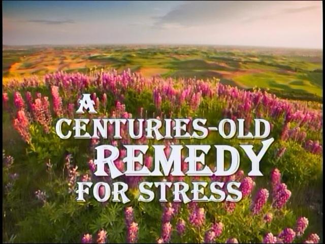 Een eeuwenoud middel tegen stress